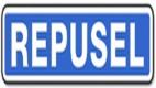 Repusel Wohnwagenspiegel